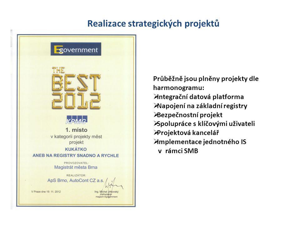 Realizace strategických projektů
