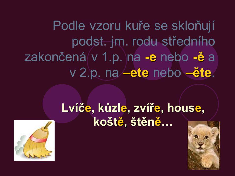 Lvíče, kůzle, zvíře, house, koště, štěně…