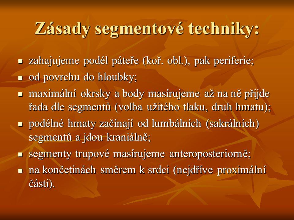 Zásady segmentové techniky: