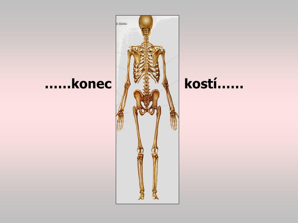 ……konec kostí……