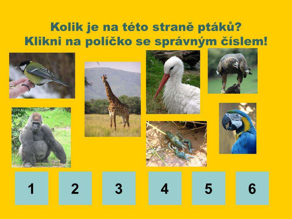 Kolik je na této straně ptáků Klikni na políčko se správným číslem!