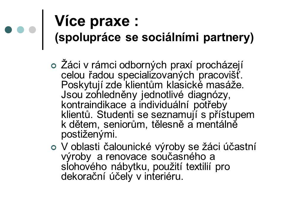 Více praxe : (spolupráce se sociálními partnery)