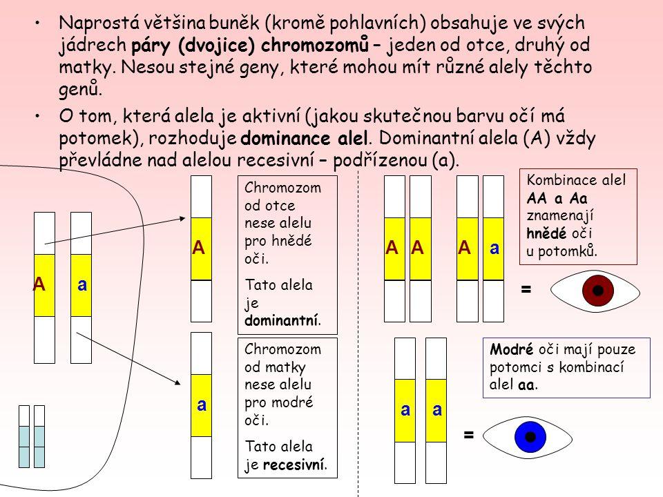 Naprostá většina buněk (kromě pohlavních) obsahuje ve svých jádrech páry (dvojice) chromozomů – jeden od otce, druhý od matky. Nesou stejné geny, které mohou mít různé alely těchto genů.