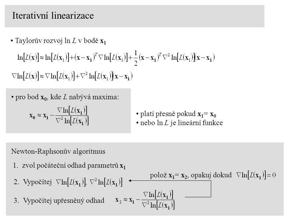 Iterativní linearizace