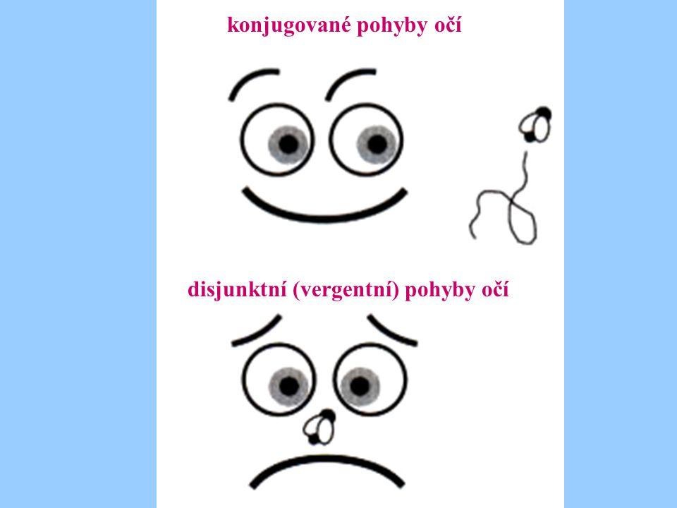 konjugované pohyby očí