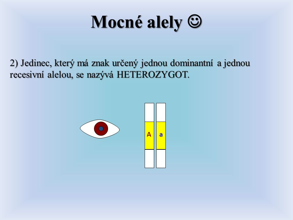 Mocné alely  2) Jedinec, který má znak určený jednou dominantní a jednou recesivní alelou, se nazývá HETEROZYGOT.