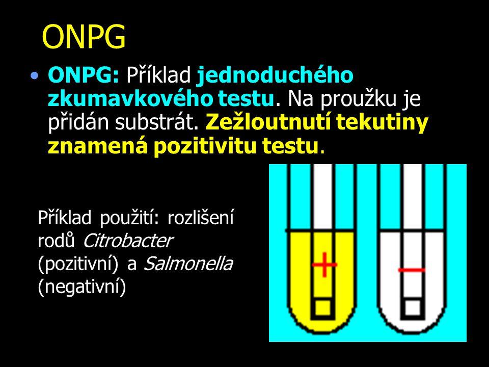 ONPG ONPG: Příklad jednoduchého zkumavkového testu. Na proužku je přidán substrát. Zežloutnutí tekutiny znamená pozitivitu testu.