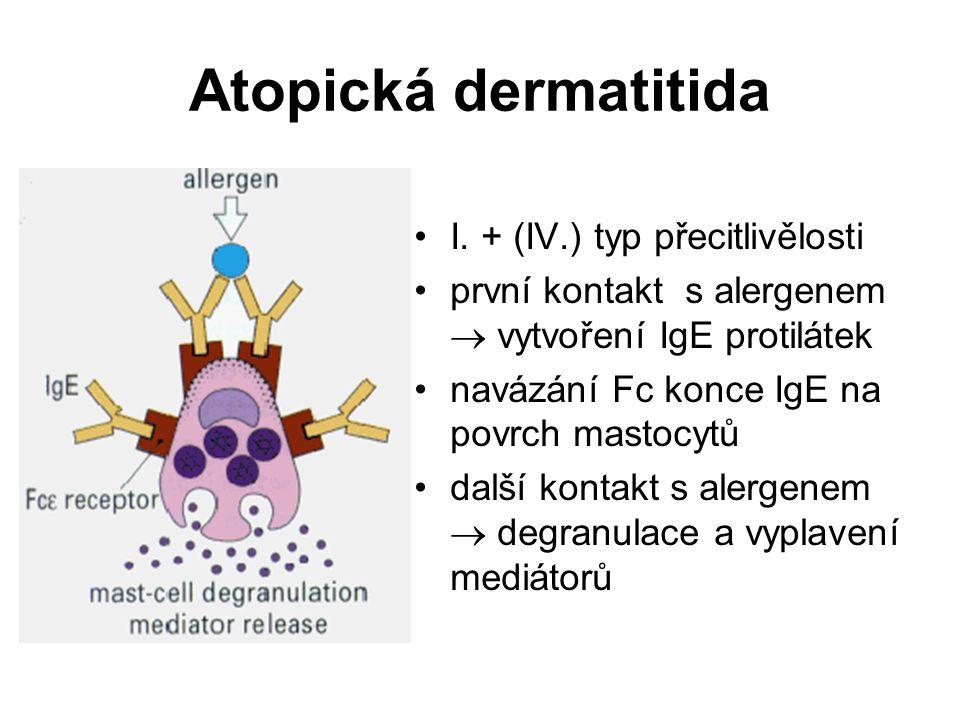 Atopická dermatitida I. + (IV.) typ přecitlivělosti