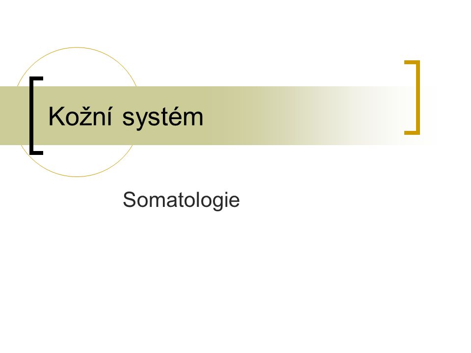 Kožní systém Somatologie
