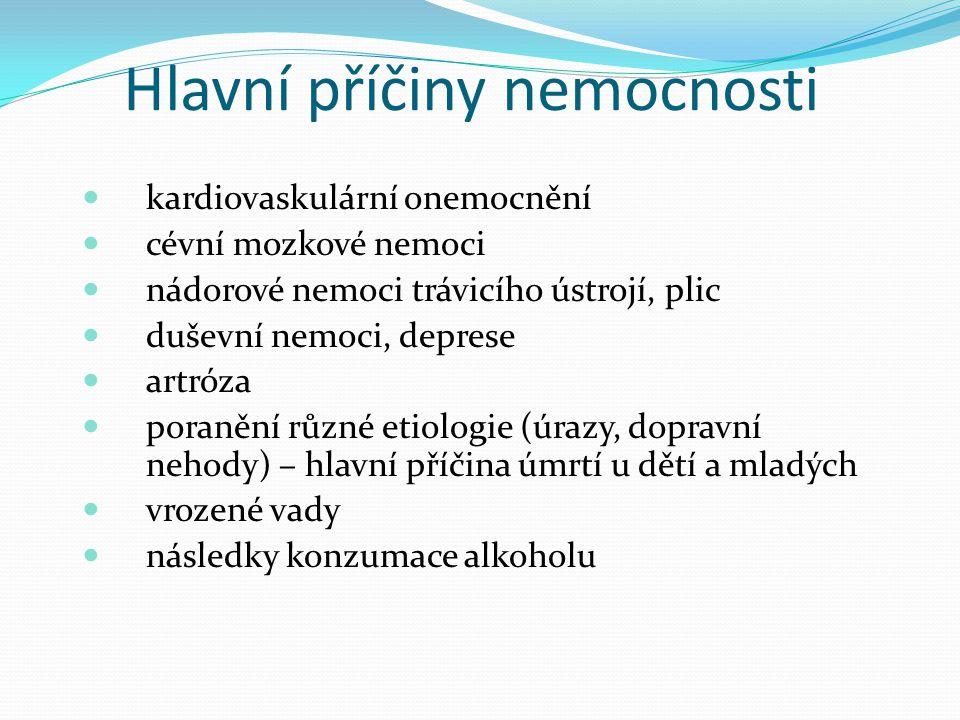 Hlavní příčiny nemocnosti