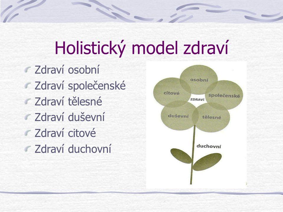 Holistický model zdraví