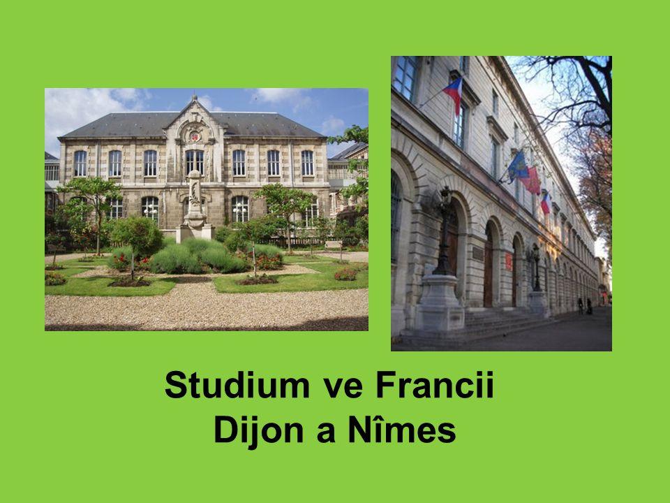 Studium ve Francii Dijon a Nîmes