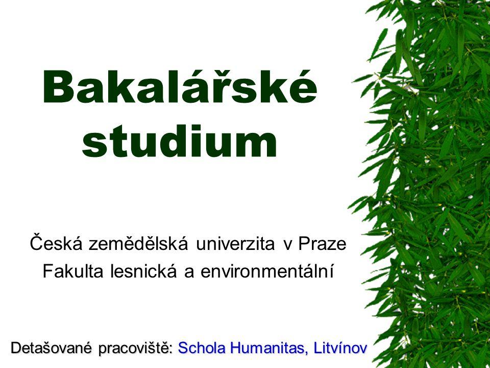 Česká zemědělská univerzita v Praze Fakulta lesnická a environmentální