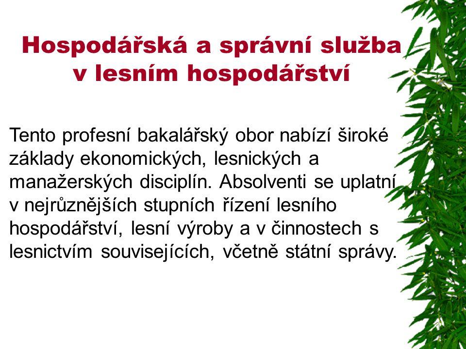 Hospodářská a správní služba v lesním hospodářství