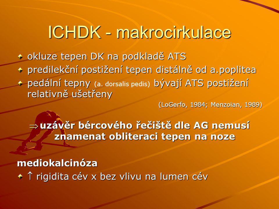ICHDK - makrocirkulace