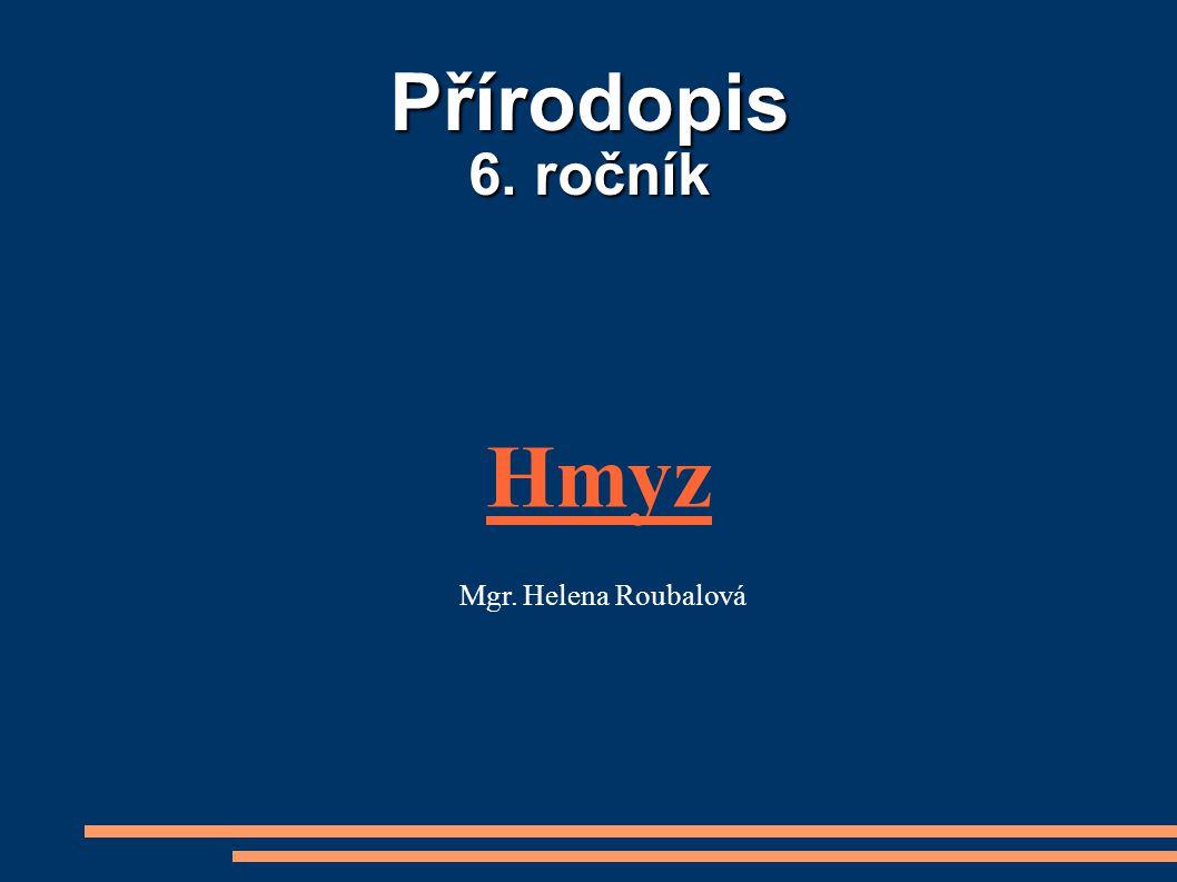Přírodopis 6. ročník Hmyz Mgr. Helena Roubalová