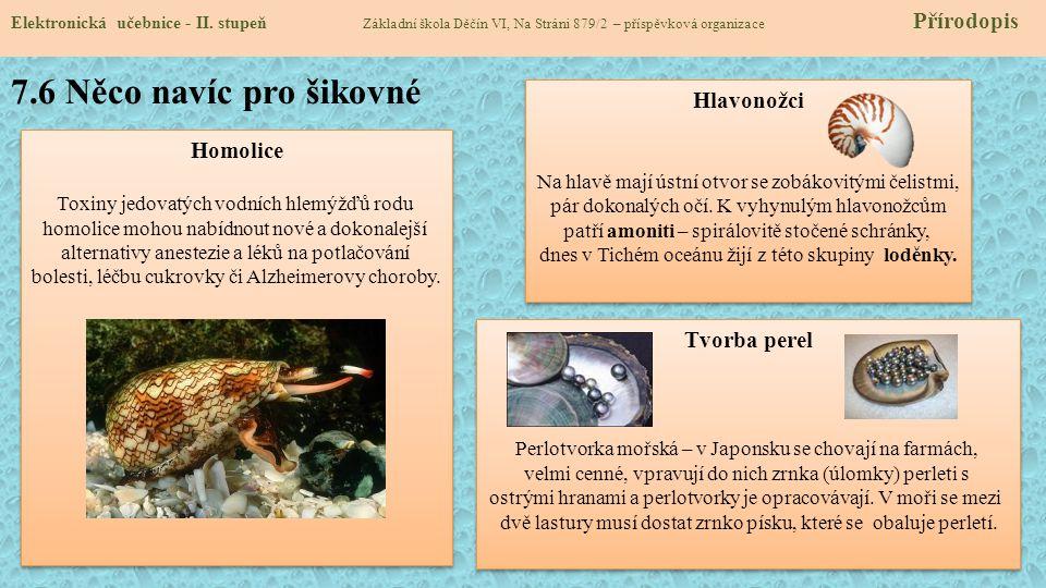 7.6 Něco navíc pro šikovné Hlavonožci Homolice Tvorba perel