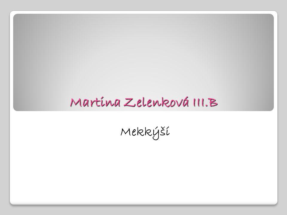 Martina Zelenková III.B
