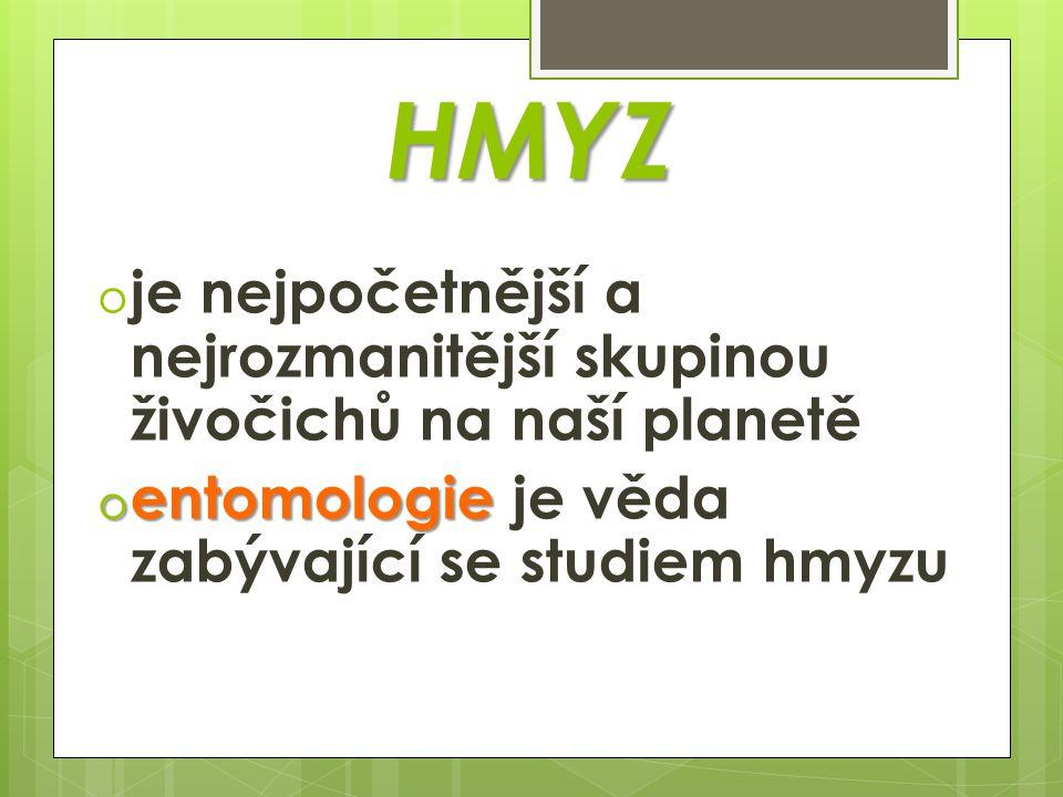 HMYZ je nejpočetnější a nejrozmanitější skupinou živočichů na naší planetě.