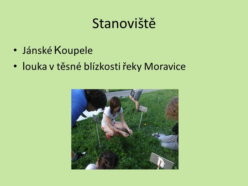 Stanoviště Jánské Koupele louka v těsné blízkosti řeky Moravice