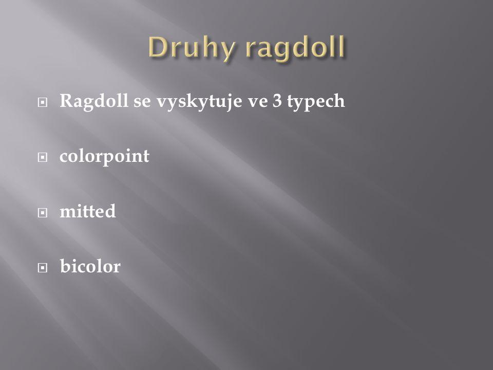 Druhy ragdoll Ragdoll se vyskytuje ve 3 typech colorpoint mitted