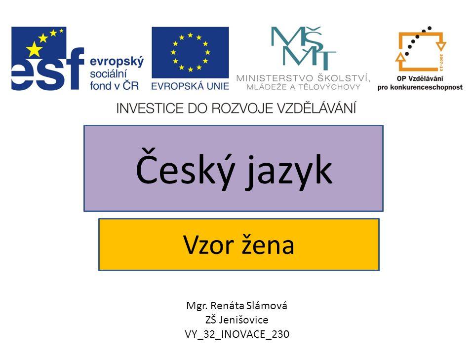 Český jazyk Vzor žena Mgr. Renáta Slámová ZŠ Jenišovice
