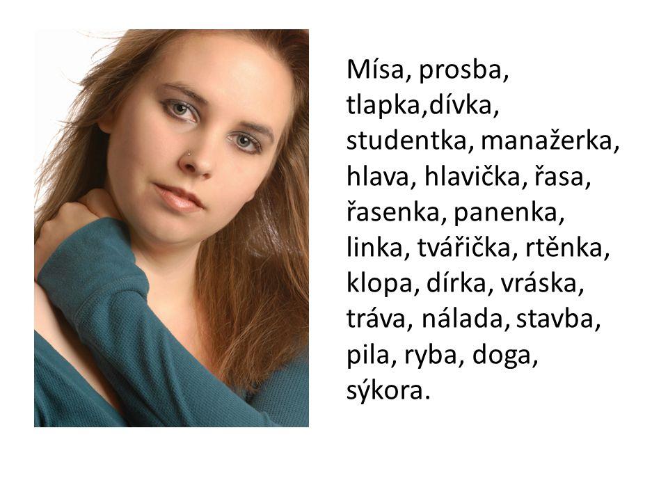 Mísa, prosba, tlapka,dívka, studentka, manažerka, hlava, hlavička, řasa, řasenka, panenka, linka, tvářička, rtěnka, klopa, dírka, vráska, tráva, nálada, stavba, pila, ryba, doga, sýkora.
