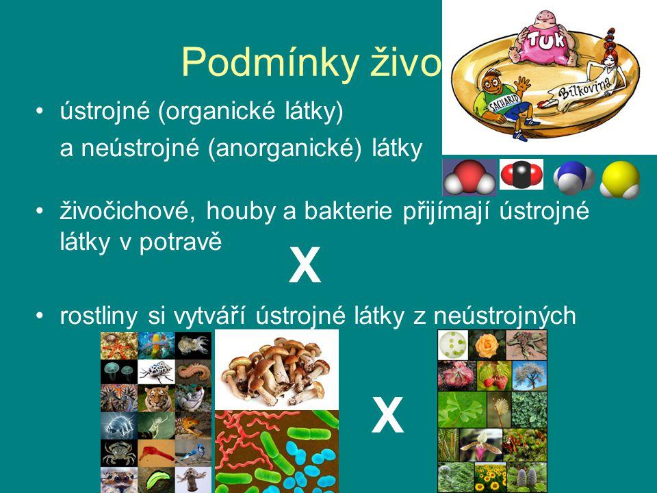 X X Podmínky života ústrojné (organické látky)