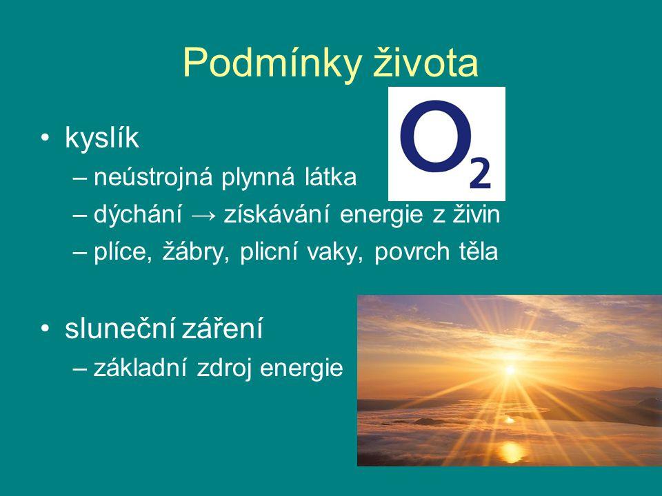 Podmínky života kyslík sluneční záření neústrojná plynná látka