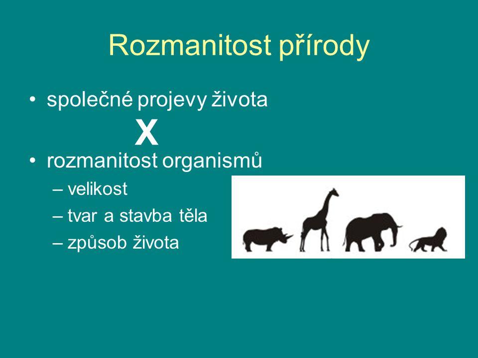X Rozmanitost přírody společné projevy života rozmanitost organismů