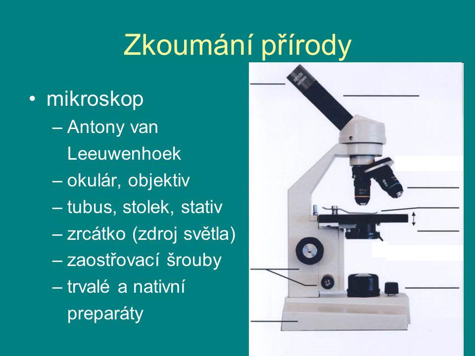 Zkoumání přírody mikroskop Antony van Leeuwenhoek okulár, objektiv