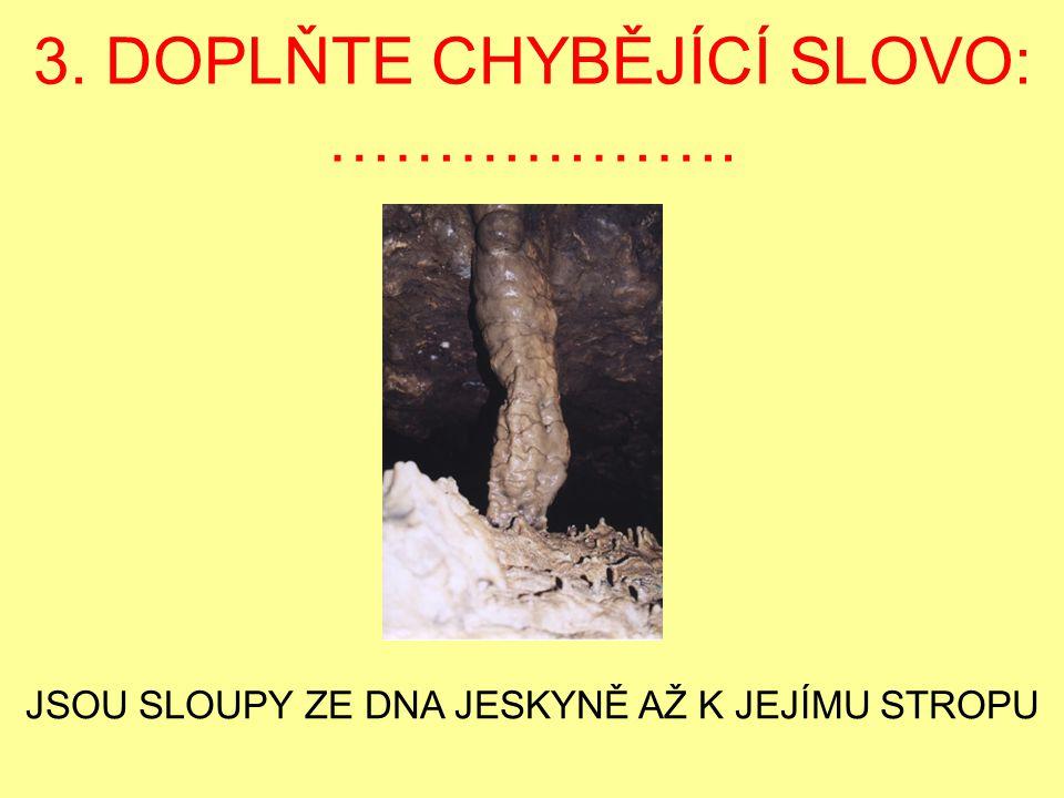 3. DOPLŇTE CHYBĚJÍCÍ SLOVO: ……………….