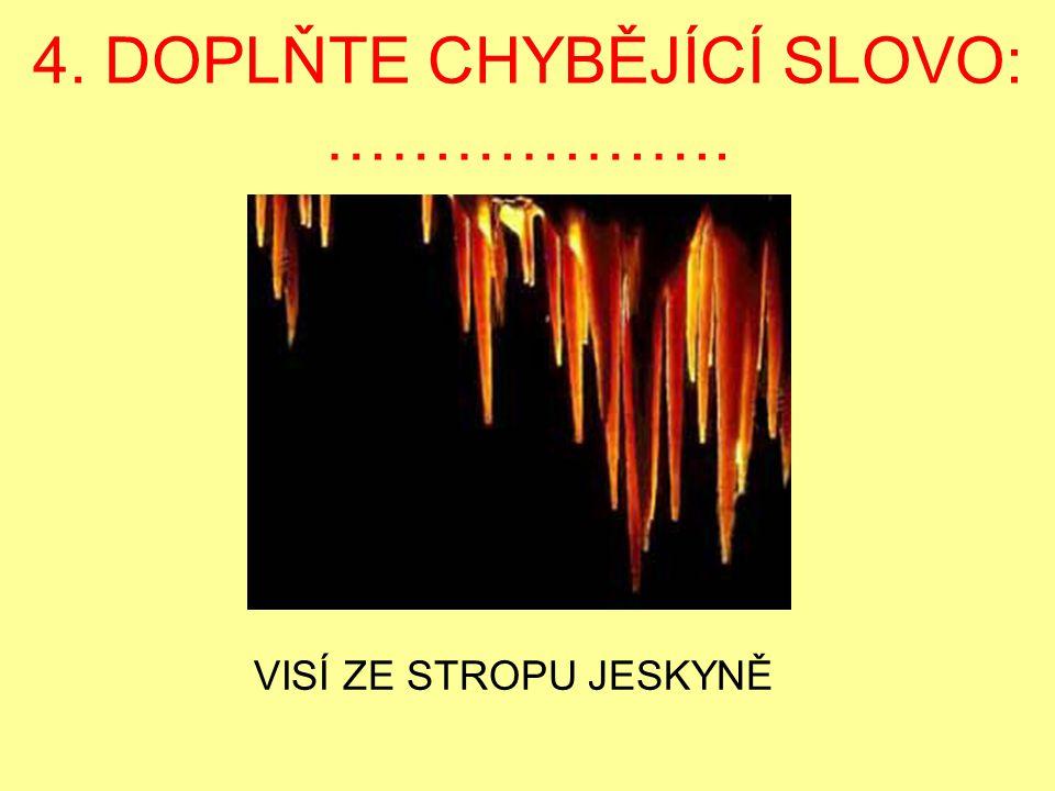 4. DOPLŇTE CHYBĚJÍCÍ SLOVO: ……………….