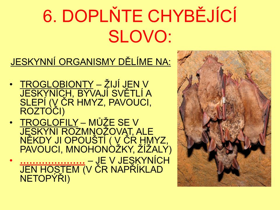 6. DOPLŇTE CHYBĚJÍCÍ SLOVO: