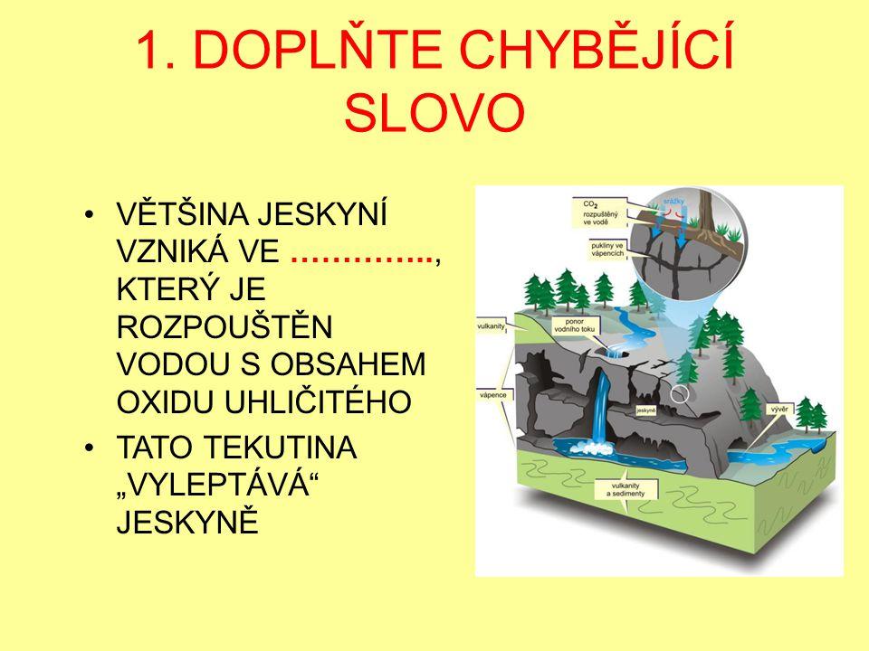 1. DOPLŇTE CHYBĚJÍCÍ SLOVO