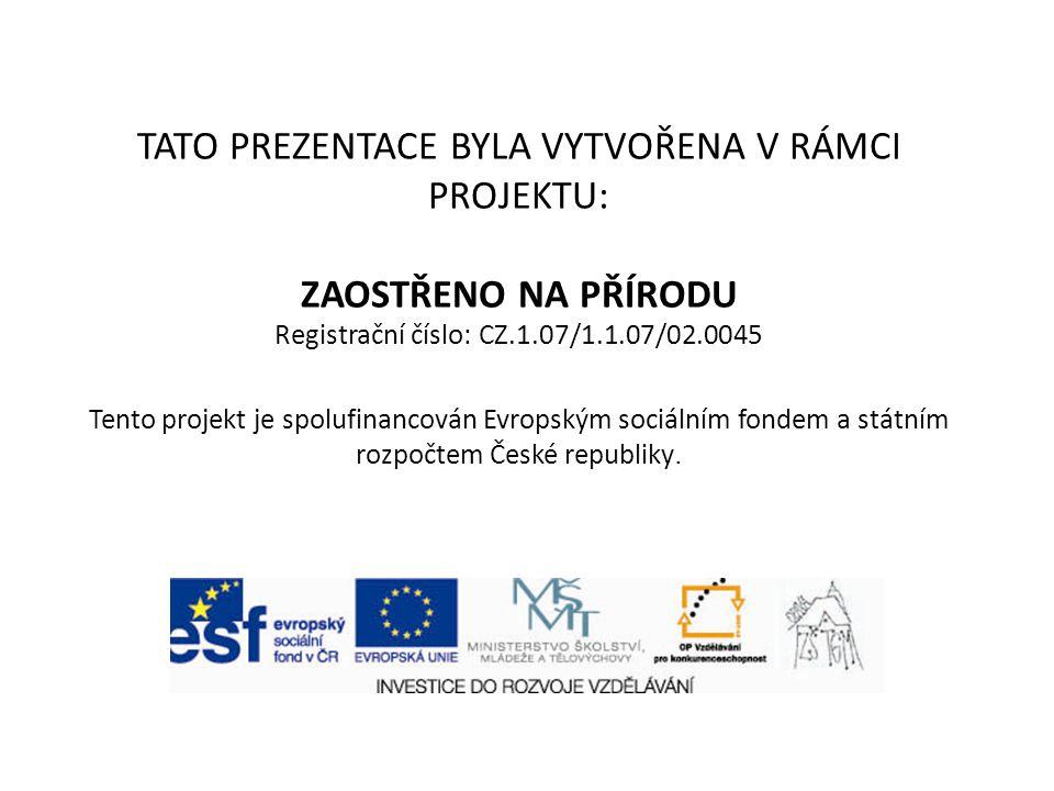 TATO PREZENTACE BYLA VYTVOŘENA V RÁMCI PROJEKTU: ZAOSTŘENO NA PŘÍRODU Registrační číslo: CZ.1.07/1.1.07/02.0045 Tento projekt je spolufinancován Evropským sociálním fondem a státním rozpočtem České republiky.