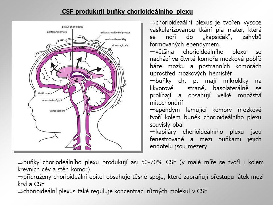 CSF produkují buňky chorioideálního plexu