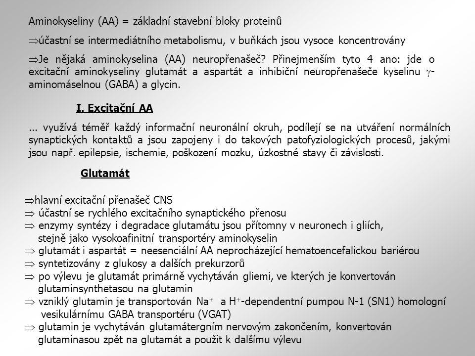 Aminokyseliny (AA) = základní stavební bloky proteinů