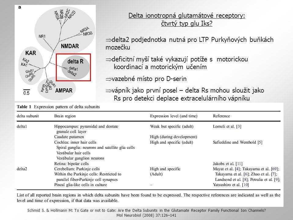 Delta ionotropná glutamátové receptory: čtvrtý typ glu Iks