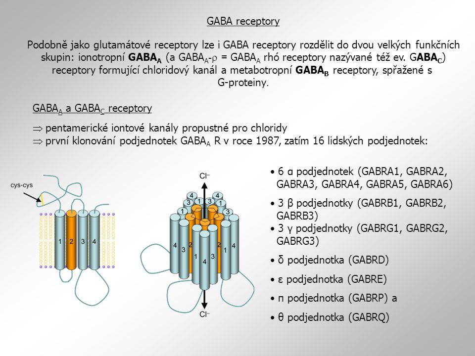 GABA receptory