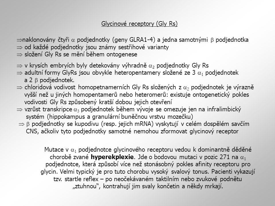 Glycinové receptory (Gly Rs)