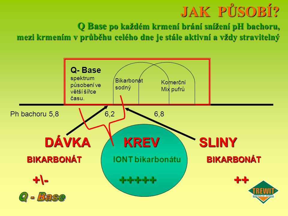 BIKARBONÁT IONT bikarbonátu BIKARBONÁT