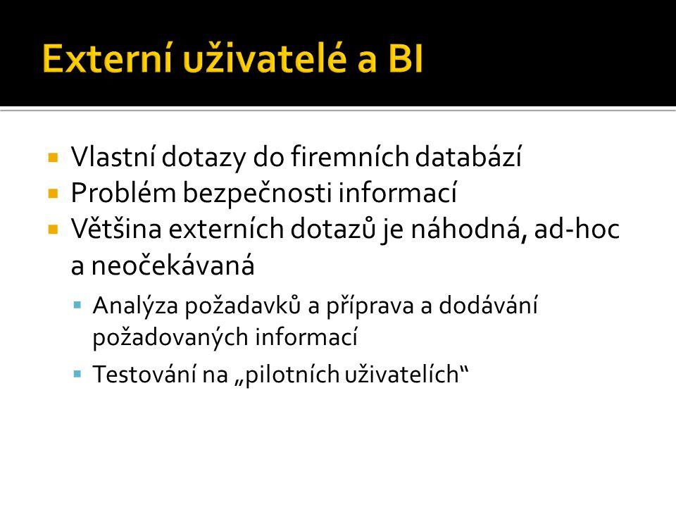 Externí uživatelé a BI Vlastní dotazy do firemních databází
