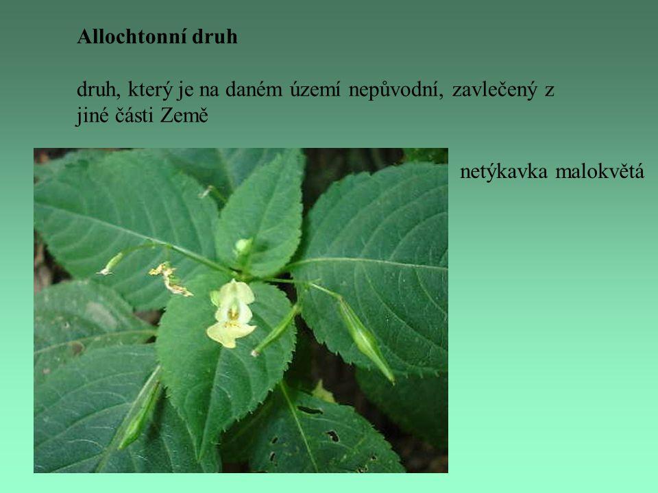 Allochtonní druh druh, který je na daném území nepůvodní, zavlečený z jiné části Země.