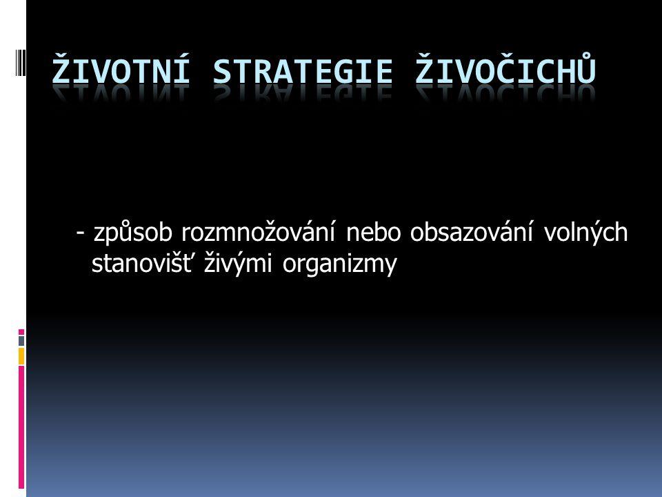Životní Strategie ŽIVOČICHŮ