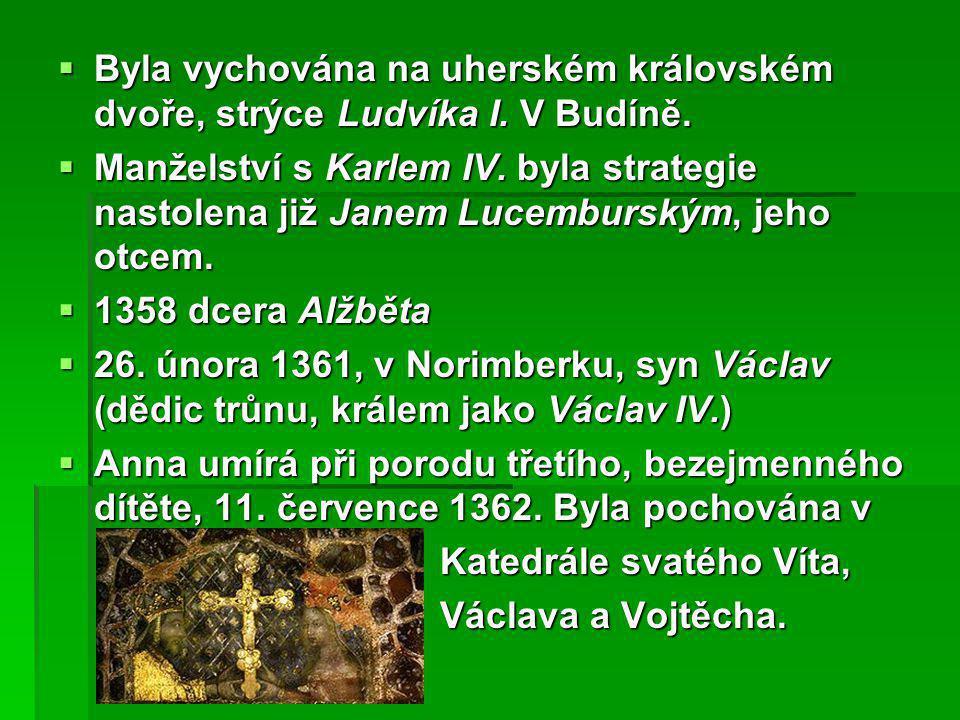 Byla vychována na uherském královském dvoře, strýce Ludvíka I. V Budíně.