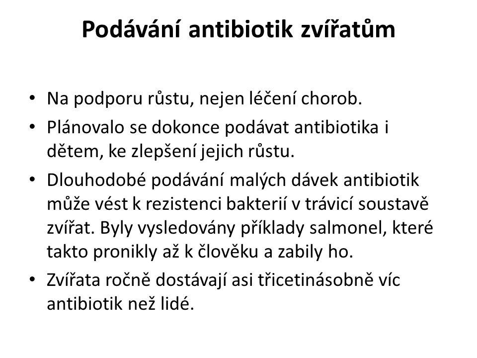 Podávání antibiotik zvířatům