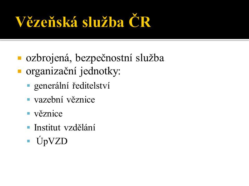 Vězeňská služba ČR ozbrojená, bezpečnostní služba