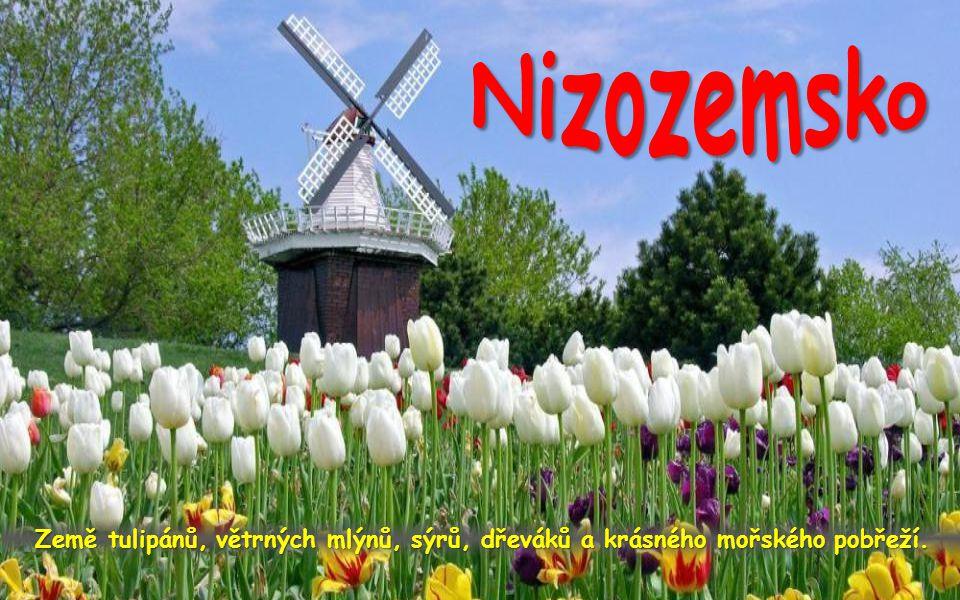 Nizozemsko Země tulipánů, větrných mlýnů, sýrů, dřeváků a krásného mořského pobřeží.