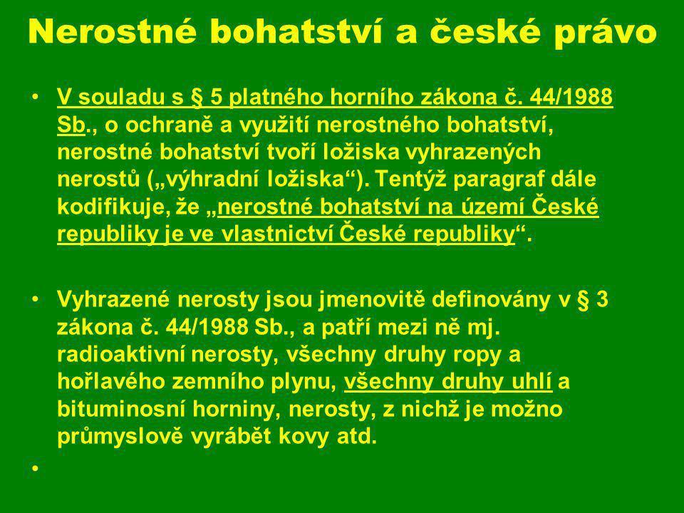 Nerostné bohatství a české právo